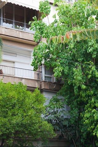 Marvelous 1 Bd w/ Balcony Near Gordon Beach