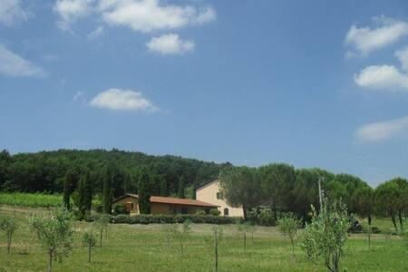 house in maremma toscana italia - Huoneisto