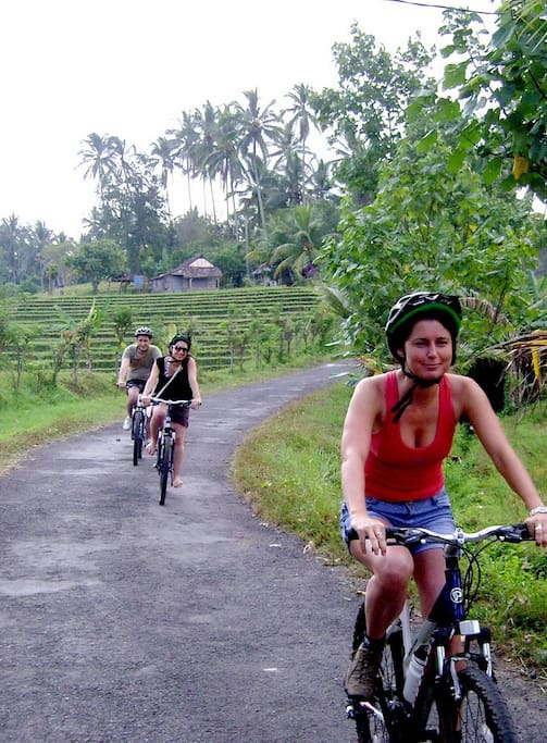A 3 hour mostly downhill scenic cycle tour through some of the most amazing rice fields and traditional villages in the heart of Tabanan. you will marvel at the sculptured Rice terraces for which the Balinese are Renowned.