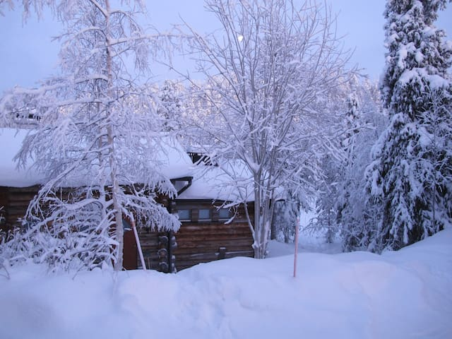 Winter wonderland - Cabin at Ruka - Kuusamo - Dağ Evi