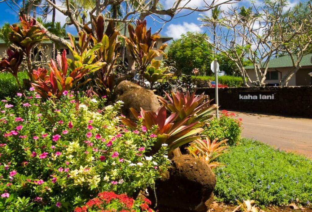 Kaha Lani Condos, Kapaa, Kauai