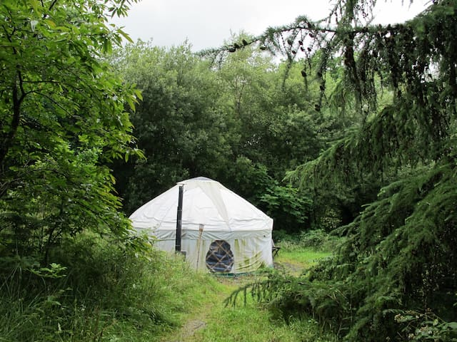 Yurt Holidays in  Beautiful Wales - Llanwrda - Jurta