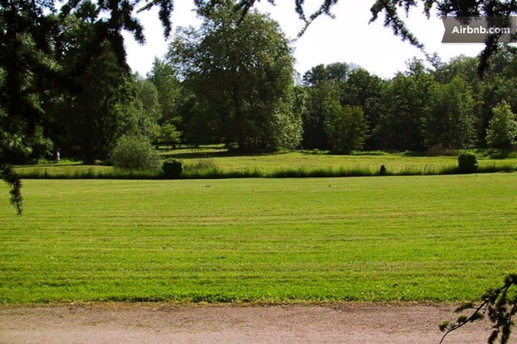 Le parc vu de votre maison