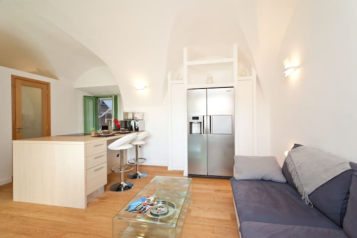 A DREAM OF AN APARTMENT  _ 40m2 - Nice - Loft