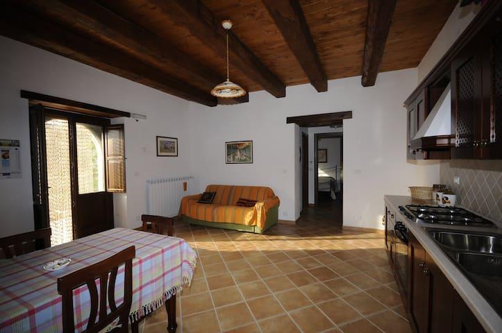 Il Grande soggiorno cucina dell'Ulivo/The huge livingroom of the Ulivo apartment
