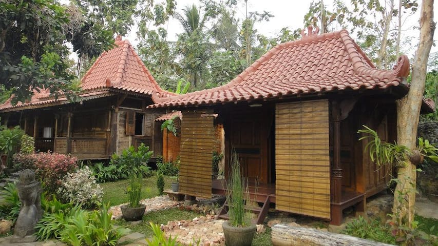 Homestay Borobudur Temple (Bungalow)
