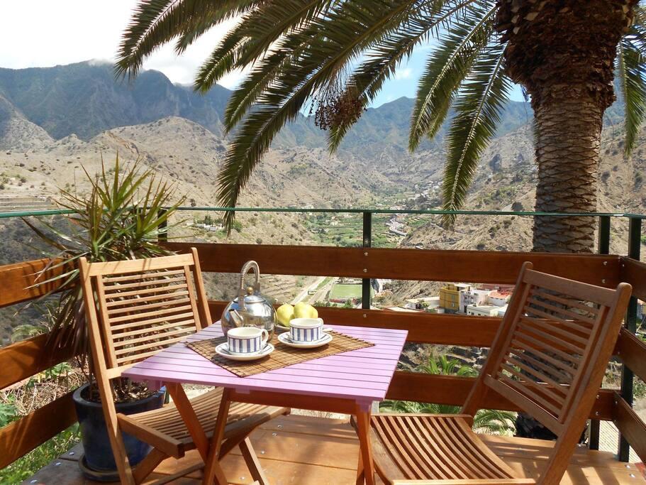 Terraza bajo la palmera con vistas.