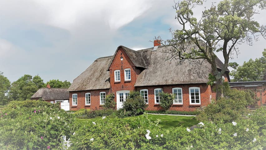 Lovely country house by the North Sea