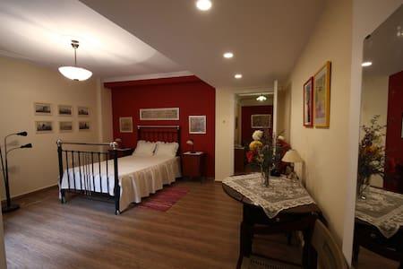 Athens Soul Apartments Plaka - Apartment