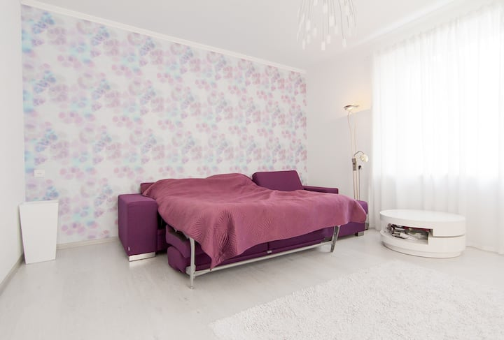 Cosy comfortable apartment in the city center
