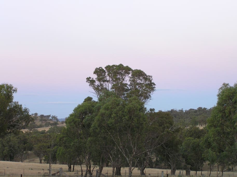 This the view from the lovely front verandah.