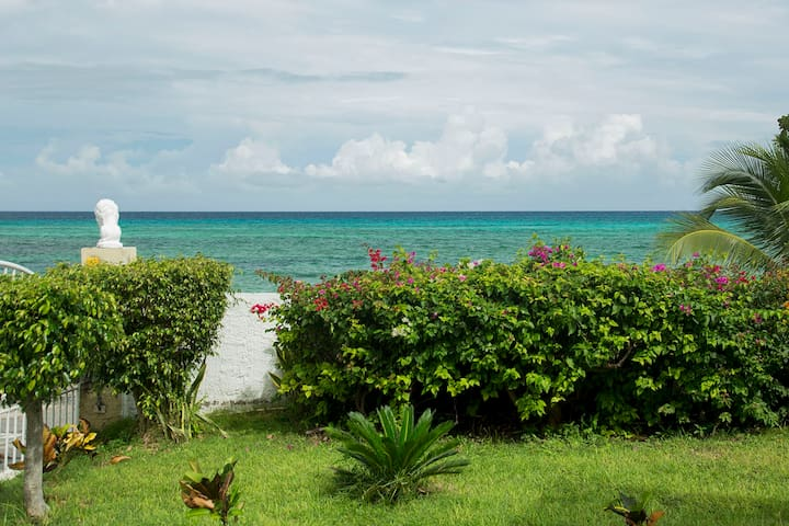 Calypso (unit 9) - Private Sea Front Studio!