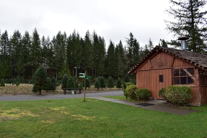 Cabin and grounds feature drive up camping