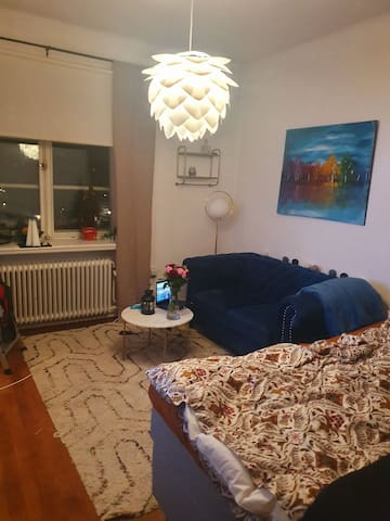 Beautiful one room flat in central of Stockholm