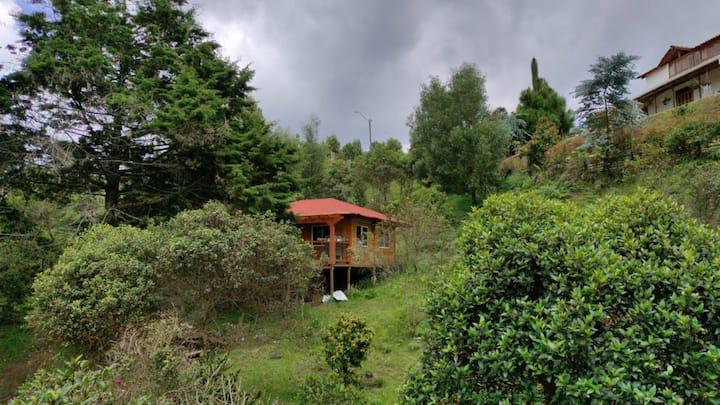 Mi casa del árbol en santa Elena