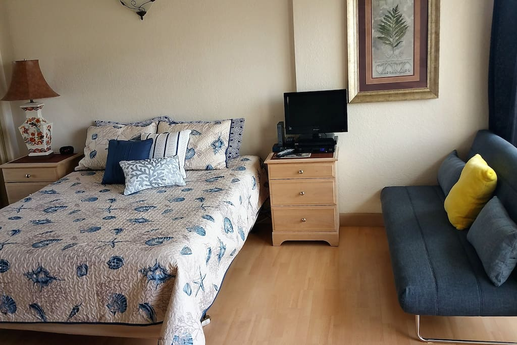 Queen Size Bed and new Twin Sofa Bed