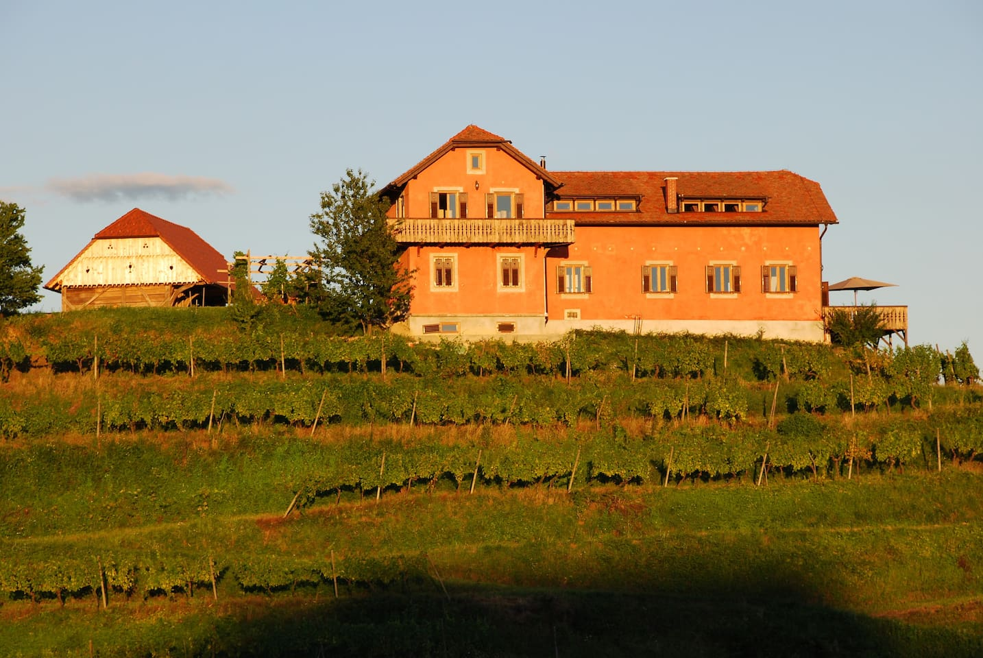 A tranquil wine estate secluded on the top of a private vineyard hill. All to yourselves.