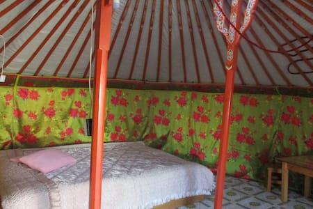 Gaya's guesthouse Ger-10