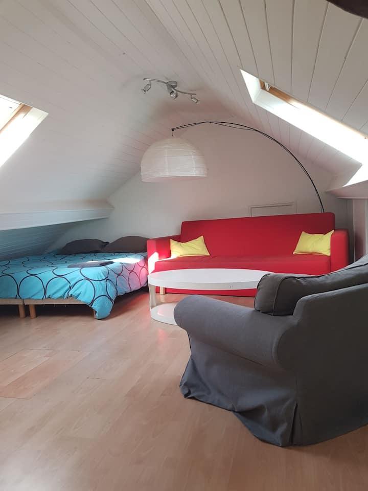 30m2 Room, near Stade de France and Paris