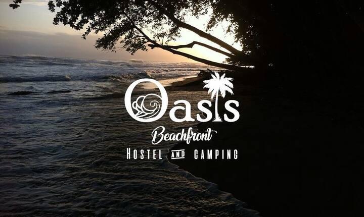 Oasis beachfront hostel- the Beach front Cabin