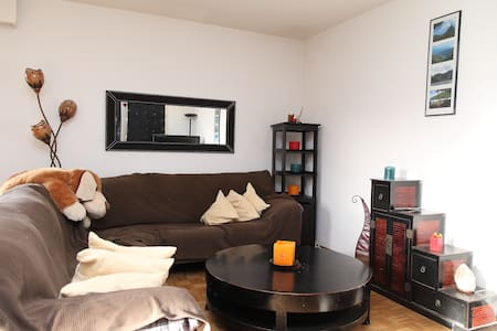 Room super calm, close to GE center - Satigny - Διαμέρισμα