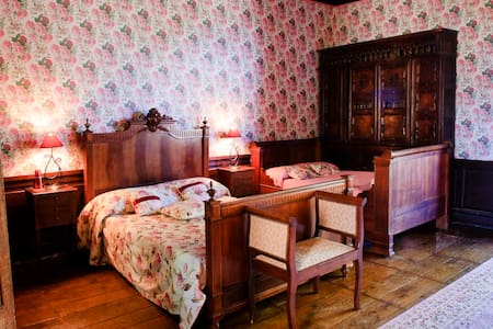 Hydrangea Suite at Chateau Ribagnac - Saint-Martin-Terressus - Hrad