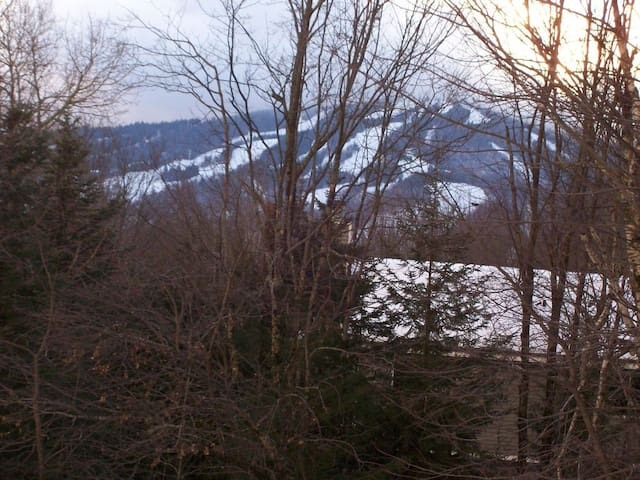 View of Mt Snow slopes