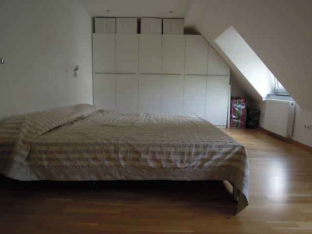 Two Room Apartment in Oberkassel