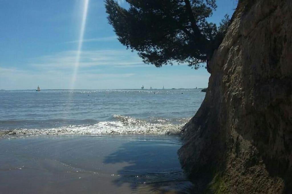 plage des nonnes, plus belle plage de meschers a 500m a pieds de la maison