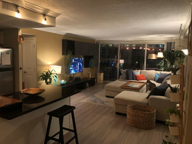 Amazing Downtown Houston Apartment (Near Stadium)