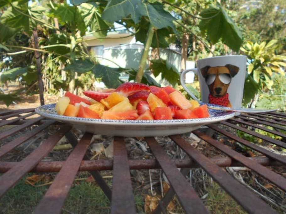 Fresh tropical fruit salad includes organic red papaya, grown in the backyard. Coffee is freshly ground, spiced Colombian espresso.
