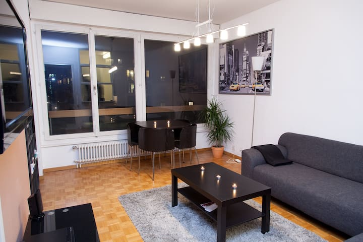 Cozy flat in center Geneva - Женева - Квартира
