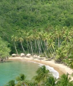 Posada Alquimia Paria - Rio Caribe - Bed & Breakfast