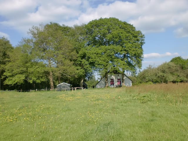Springtime in Drenthe - Holsloot - Ev