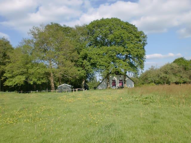 Springtime in Drenthe - Holsloot - Casa