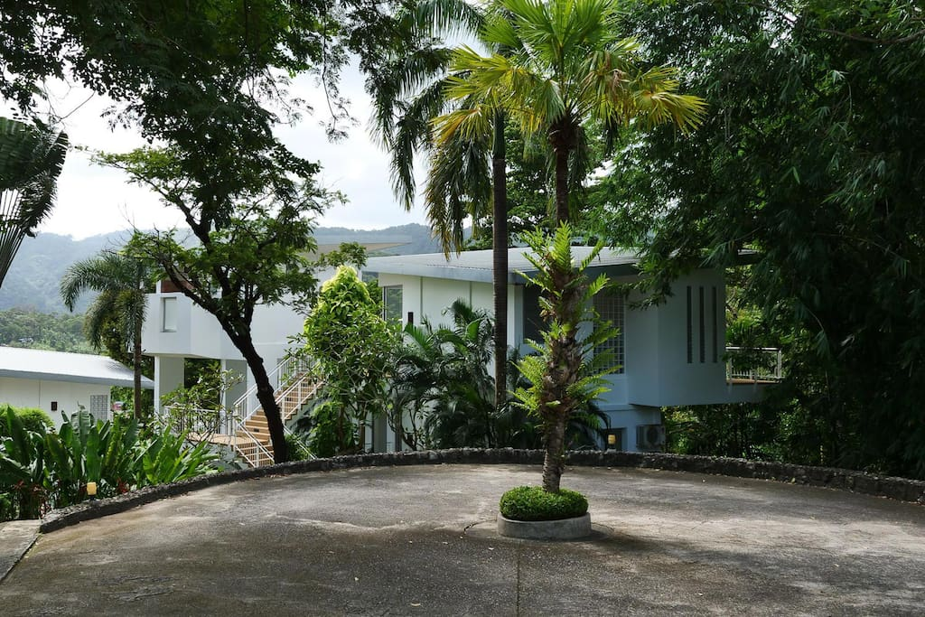 the villa is secluded by foliage