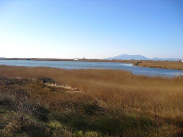 Parc natural delta de l'Ebre.