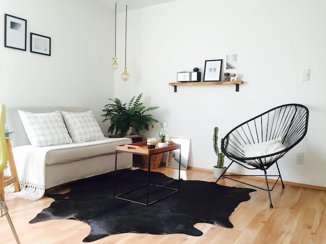 Cozy apartment in Condesa