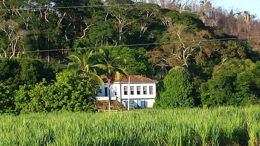 Sítio granja fazenda entre Ubá Tocantins Piraúba