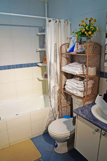 banio con ducha moderna.