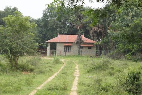 Skjs farm Stay Cottage