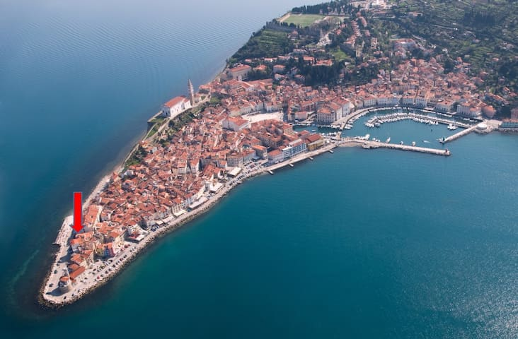 Piran Punta Beach Apartment - Piran