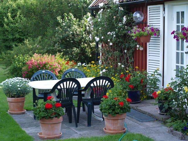 Tosteberga garden