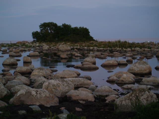 Uninhabited island in Tosteberga Meadows