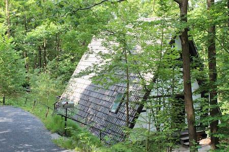 Waldhäuschen in Unterfranken - Sulzfeld
