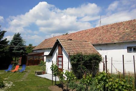 Cute house near to Budapest - Dunabogdány - Apartamento