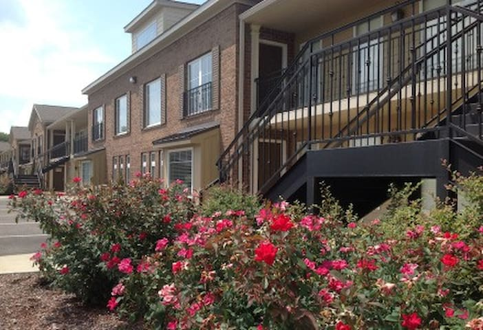 1 BR condo, easy walk to campus & cotton district - Starkville - Kondominium