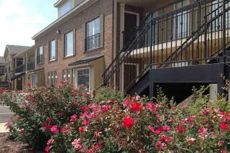 1 BR condo, easy walk to campus & cotton district - 斯塔克维尔(Starkville) - 公寓