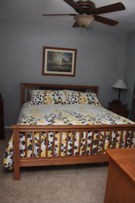 Master bedroom with king bed, night stand, and dresser