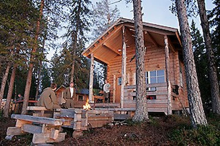 Stay on a Private Island in Lapland